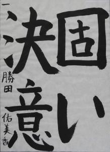 DSCN0168 のコピー