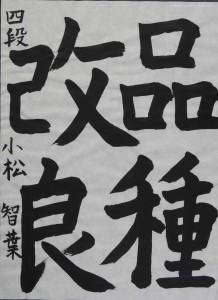 DSCN0169 のコピー