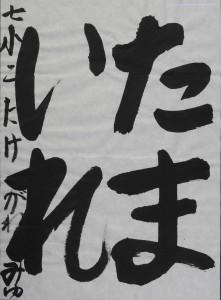 DSCN0161 のコピー
