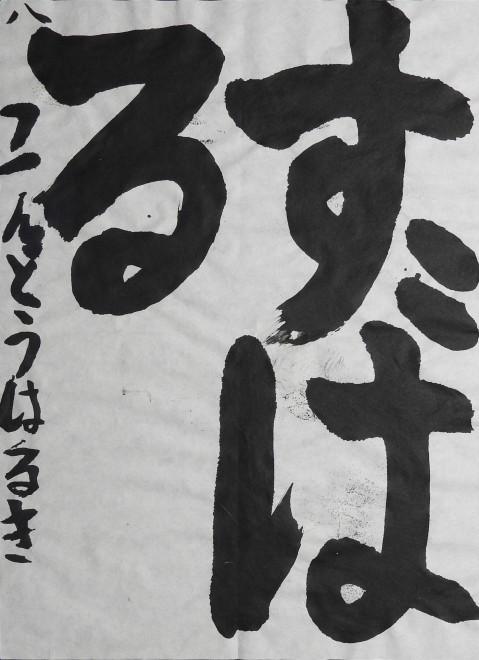 DSCN0249 のコピー